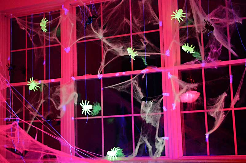 Glow in the dark spiders in the windows