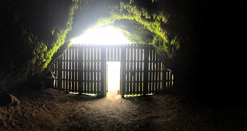 SSteinahellir cave, Iceland, interior, moss and gate
