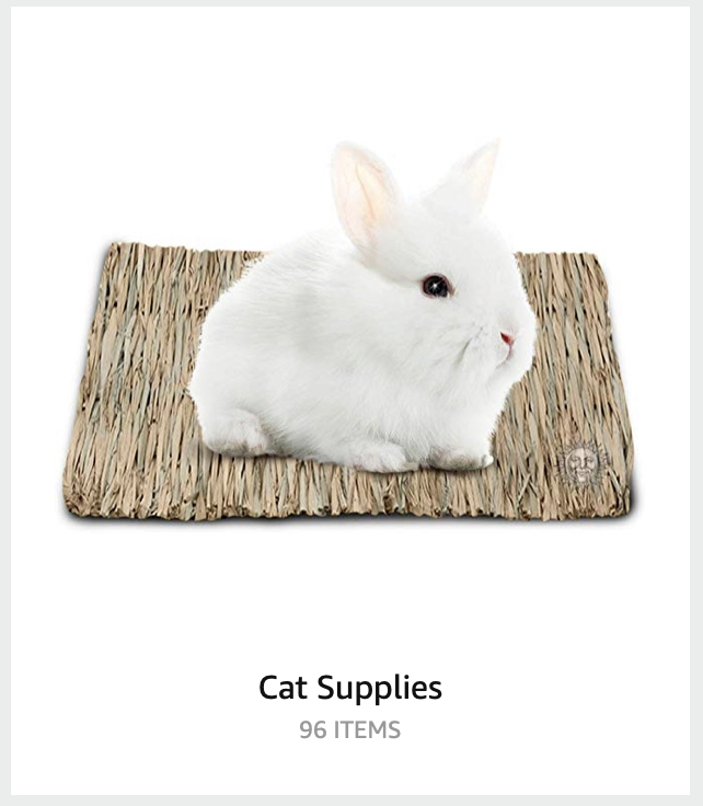 Bunny Rabbit as cat supplies, recommended by Amazon.